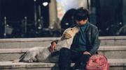 動作電影人有多拼命?這個視頻讓成龍和楊紫瓊都看哭了!