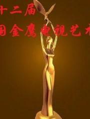 第十二屆中國金鷹電視藝術節