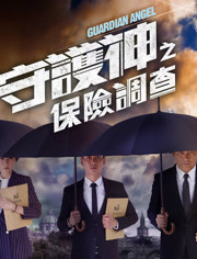 守护神之保险调查 粤语