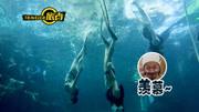 自由潜 水下漫游新姿势